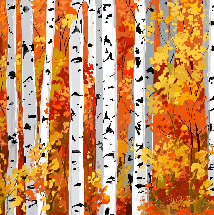 Fall Birch.jpg