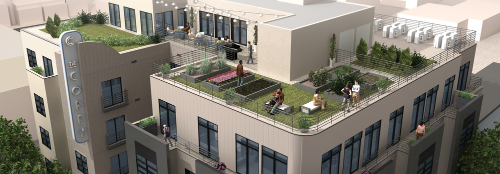 Green Roof, Wifi, Outdoor Kitchen, Wellness Room, Luxury Amenities in Washington DC