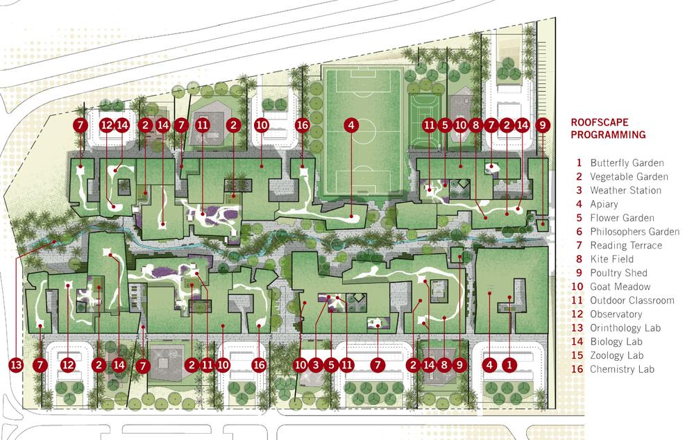 Outdoor learning gardens: programing plan