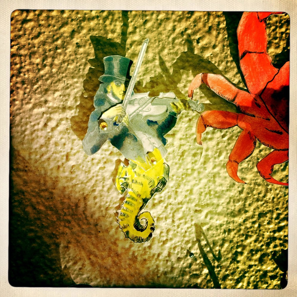 Here is our very own Seahorse string player hanging out with a crab.