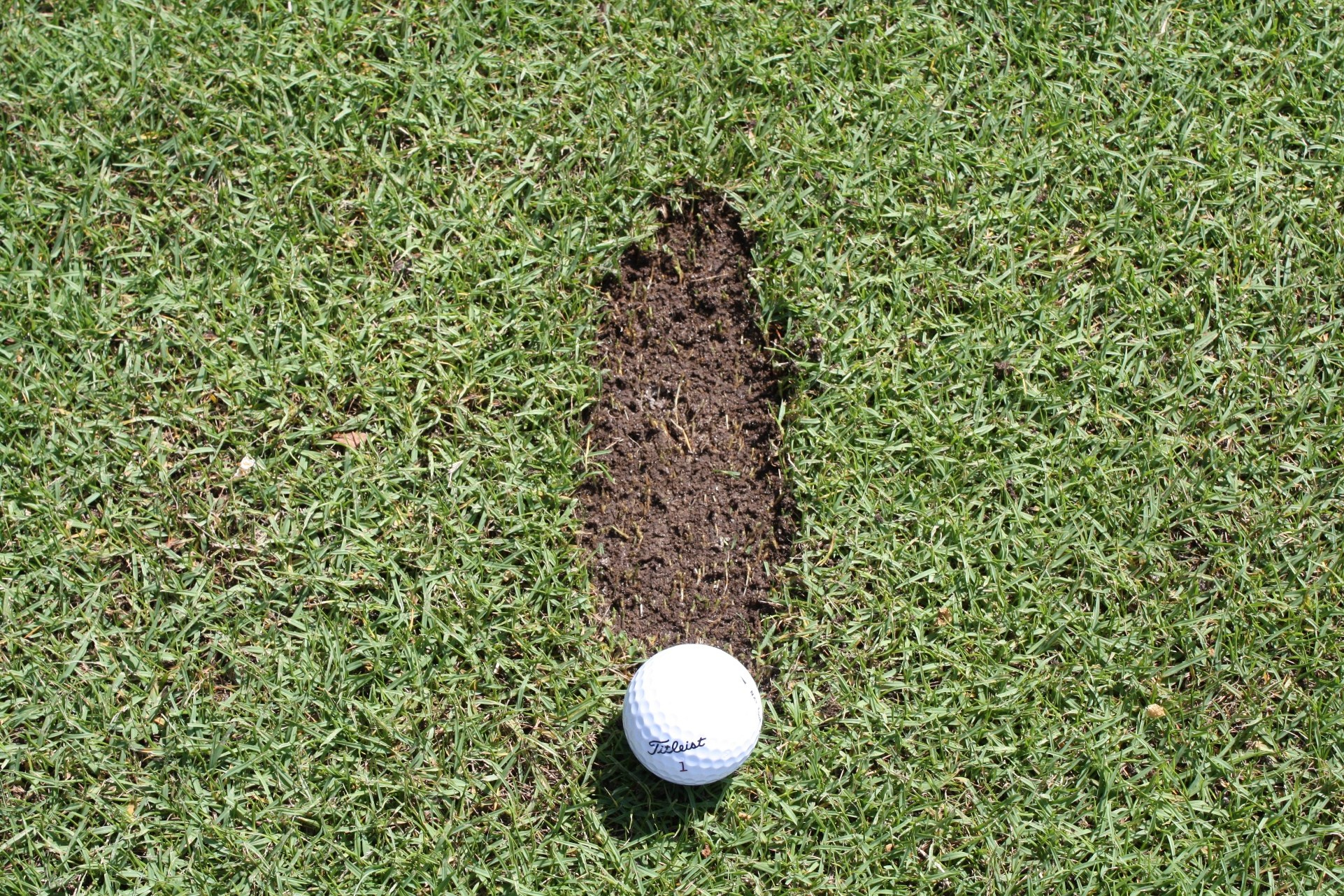 A Correctly Positioned Divot