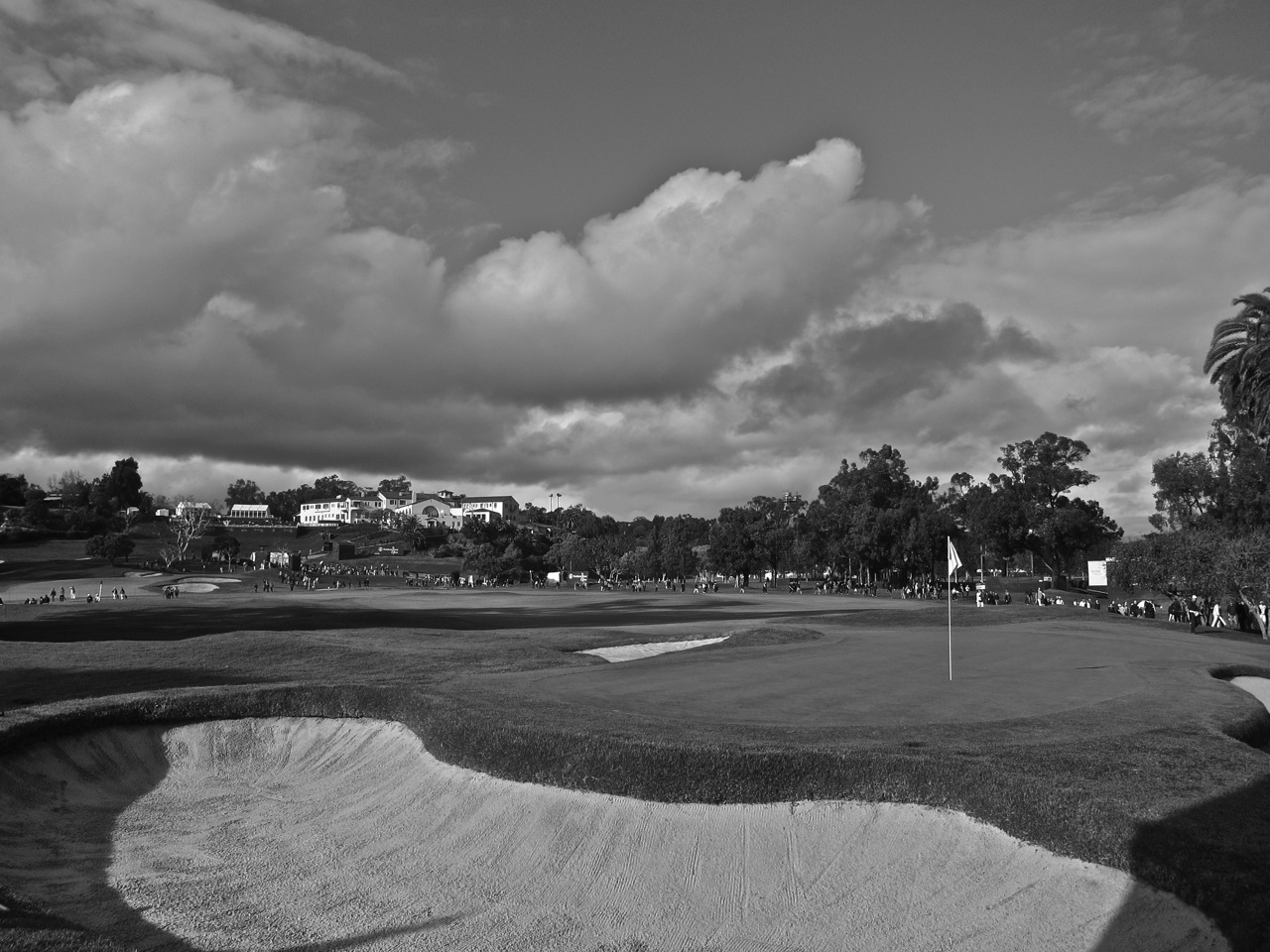 Looking Back from Behind the Tenth Green (Shackelford)