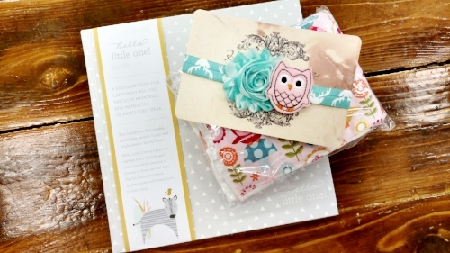 Welcome Baby Keepsake Book for baby's first year, Locally Handmade Drooler Bib & Burp Cloth, Owl Headband. Total = $46.94