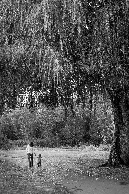 Kid Portraits Tree (1 of 1).jpg