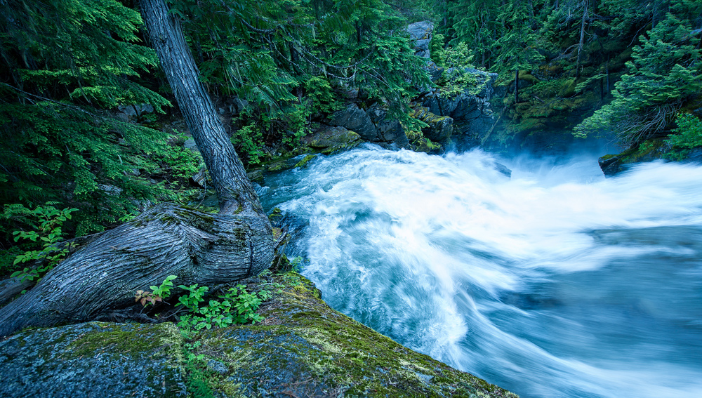 Rushing River in Washington