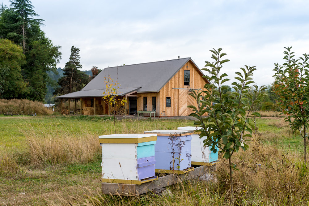 The Croft Bee Hives