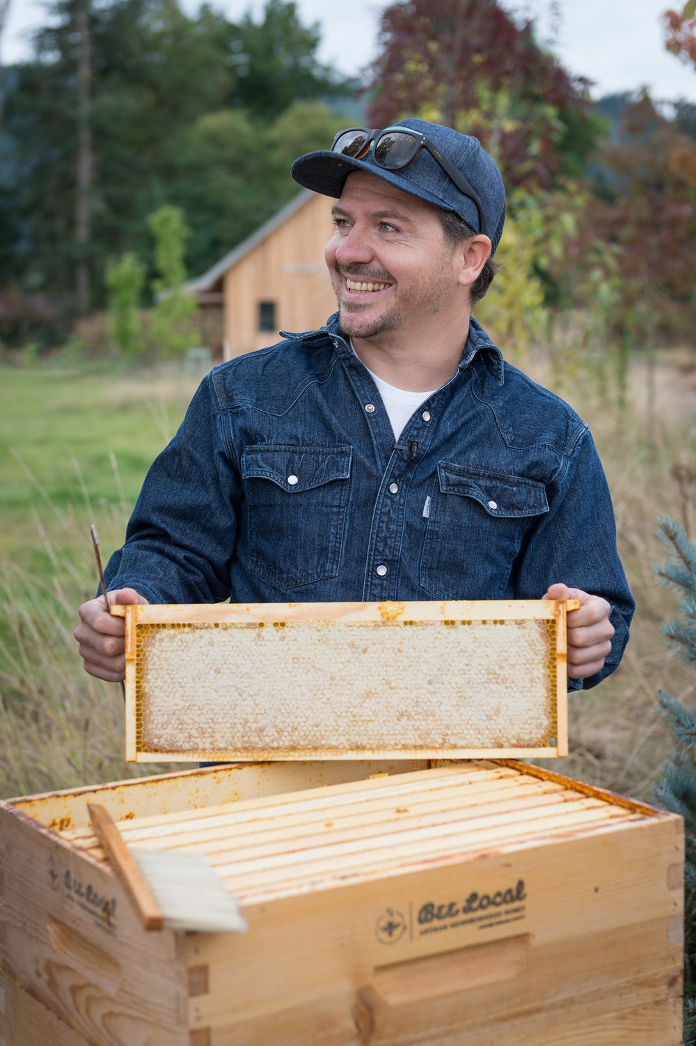Honey Harvest-.jpg