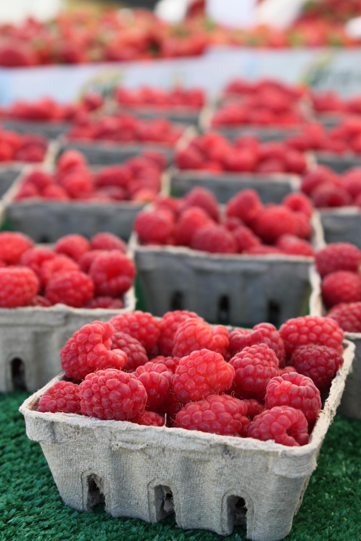 Rasberries Santa Rosa's West End Farmers Market