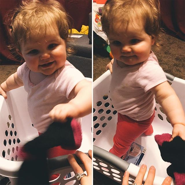 She loves playing in the laundry basket! 👚👕👖👗