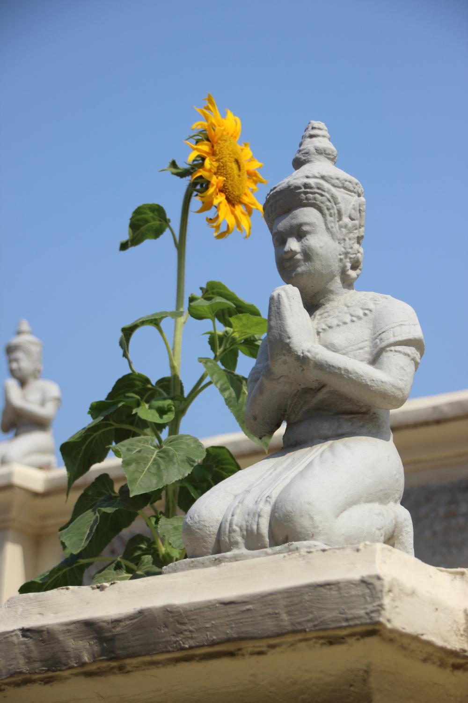 Cambodia_Siem Reap 17.JPG