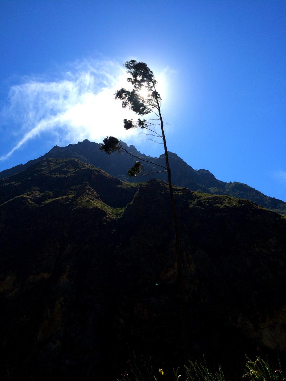 Inca Trail_8.JPG