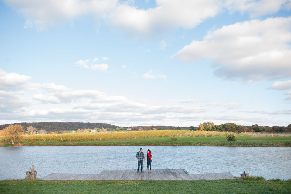 vineyard fall engagement session CT