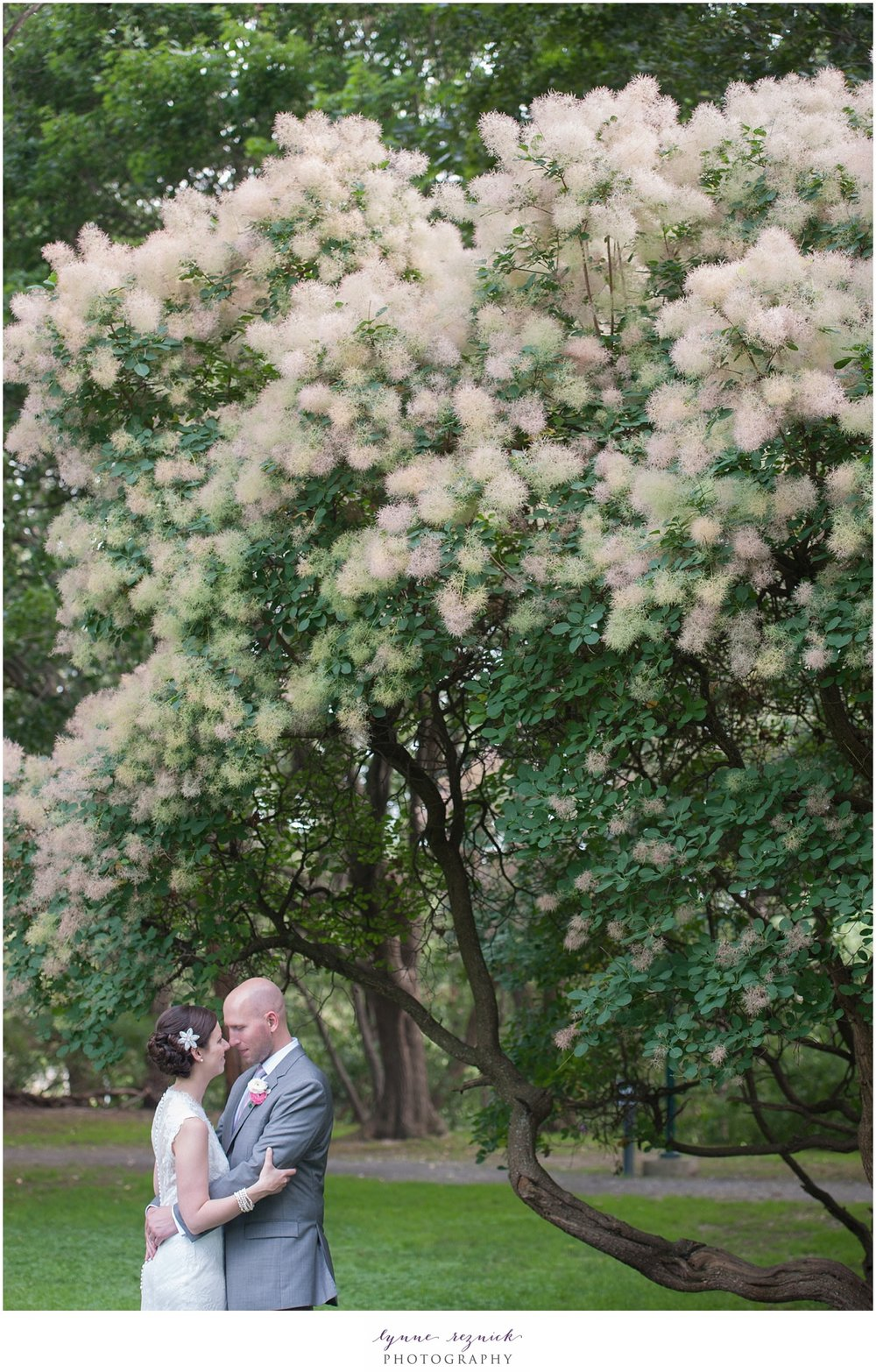 commanders mansion estate offers beautiful trees and curated grounds for couples portraits on your wedding day