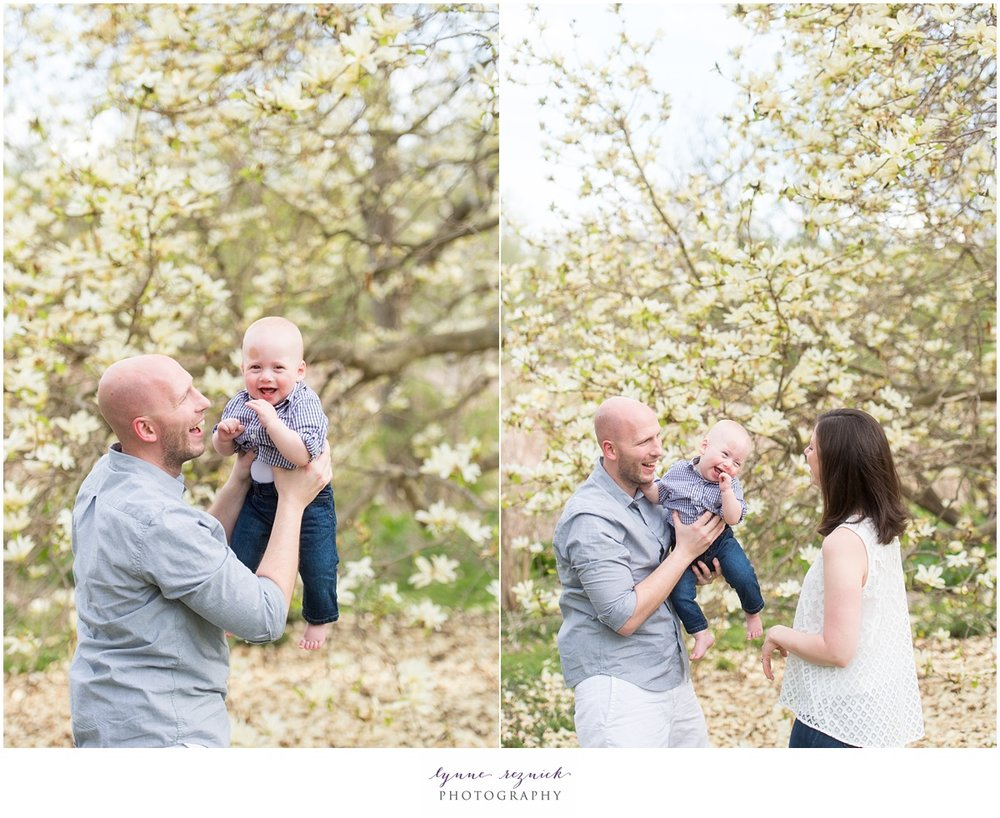 spring family portraits in Jamaica Plain at Arnold Arboretum