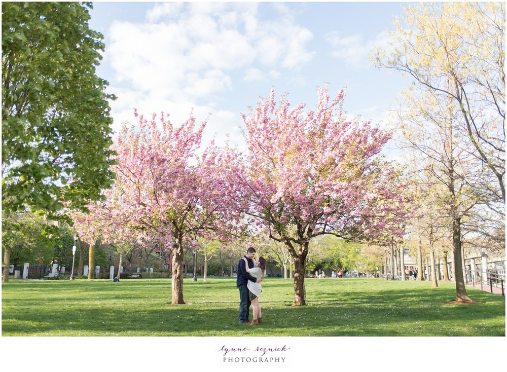 spring blossoms at Christopher Columbus Park for romantic engagement session in Boston