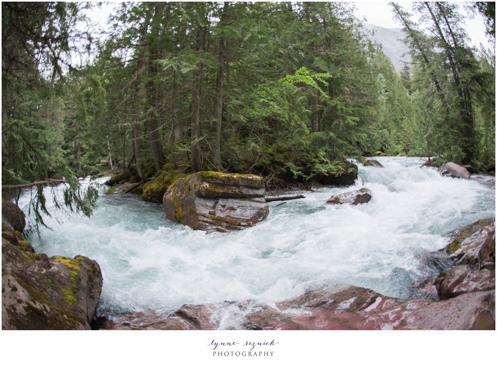 rapids along the Avalanche Creek Trail