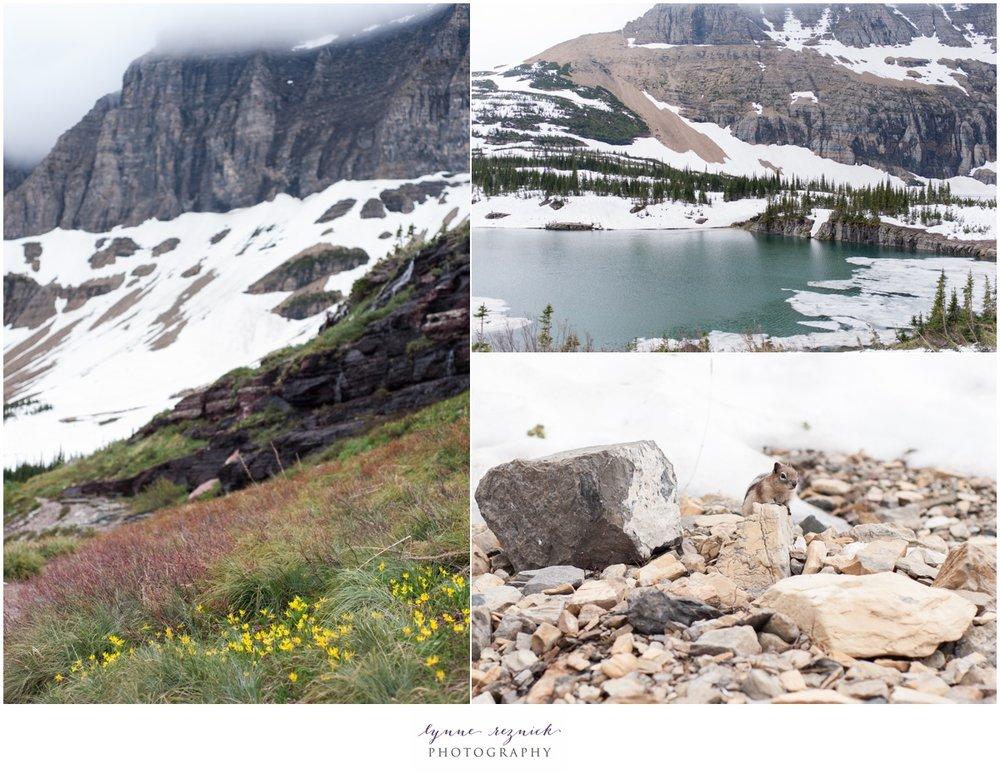 Glacier NP-0053.jpg