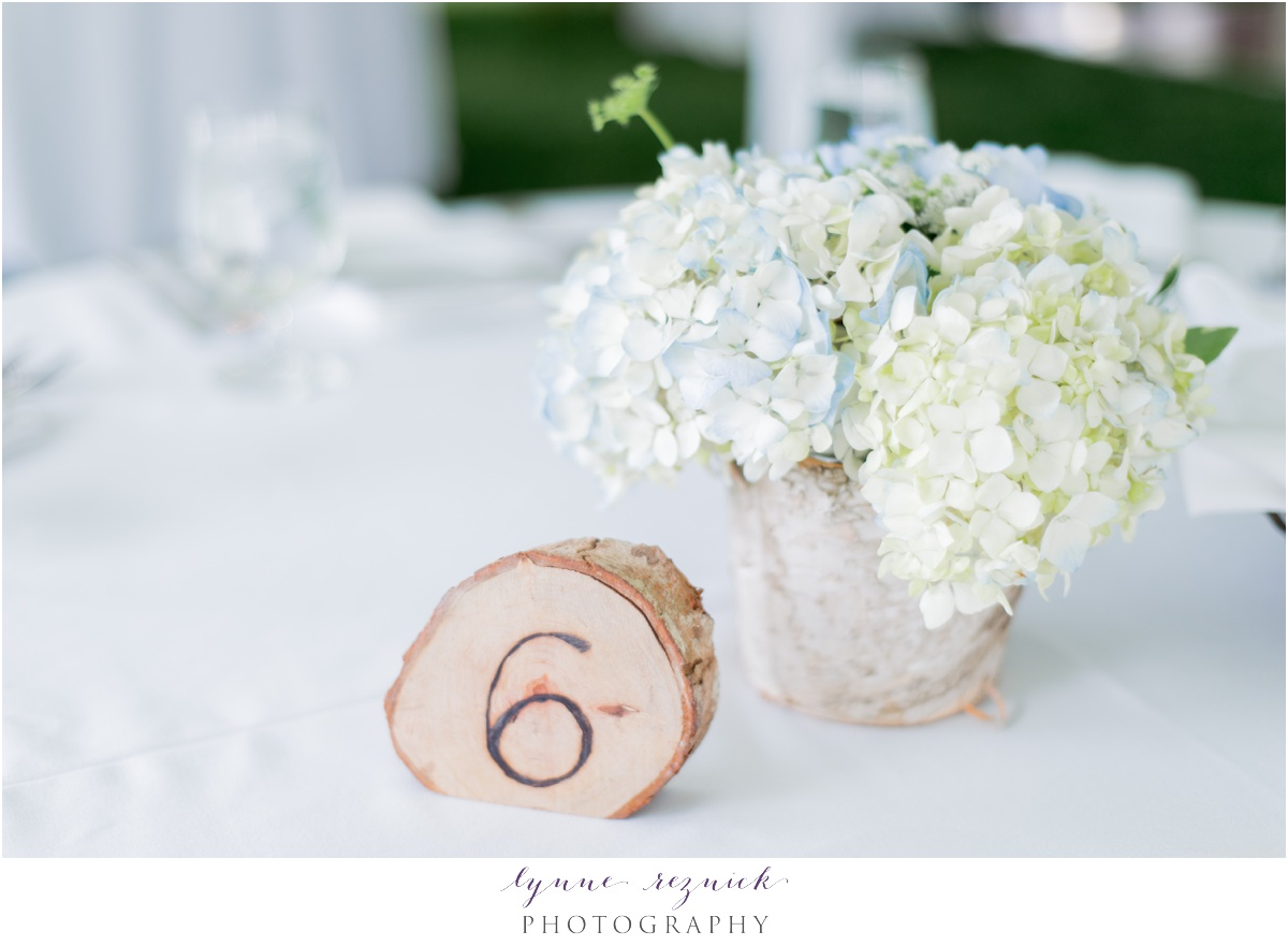 Sun-Soaked Bradley Estate Summer Wedding — Lynne Reznick Photography