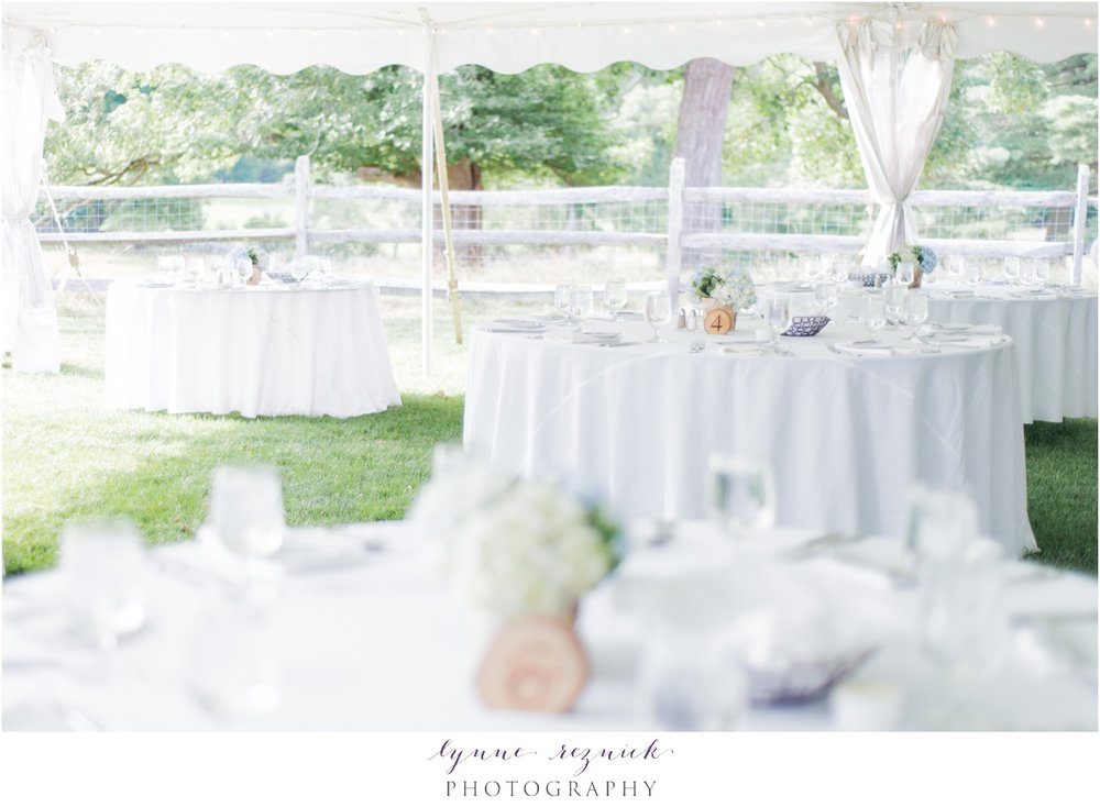 bright and airy tented wedding reception at the Bradley Estate