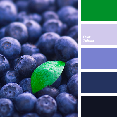 ColorPalettes.net Navy inspiration