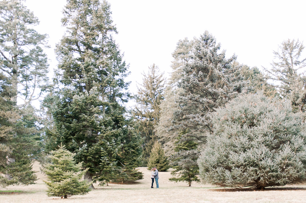 Arnold Arboretum Winter Engagement Session Couples Portrait Posing Engagement Photography In Boston
