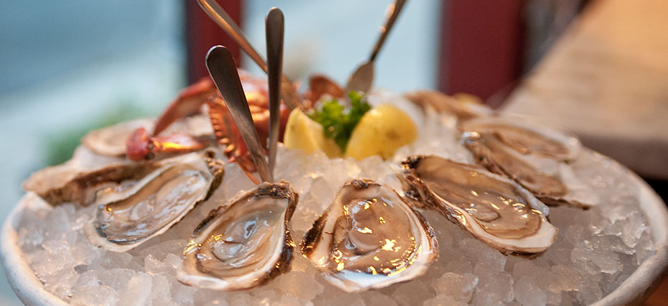 Plate of Oysters on the Half Shell on Ice
