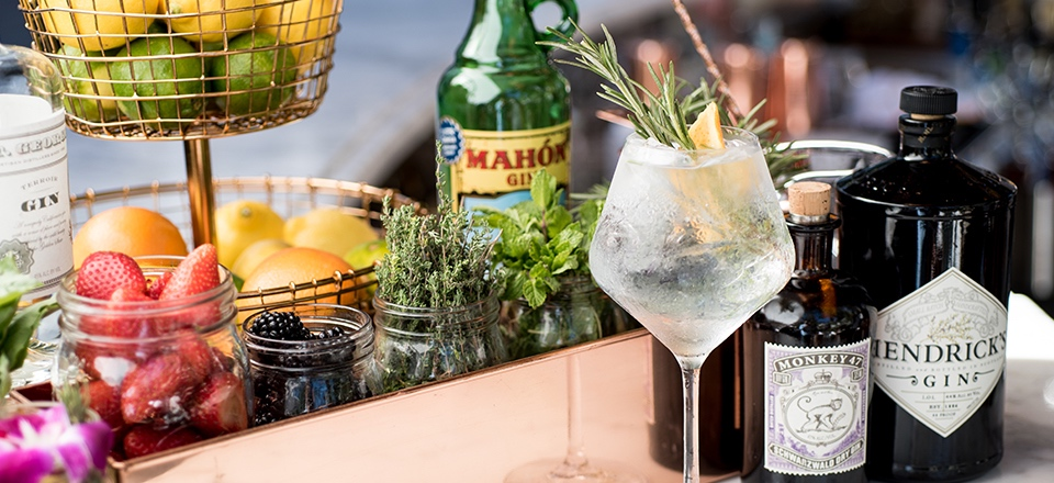 Build Your Own Gin-and-Tonic