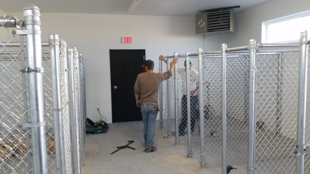 More kennels
