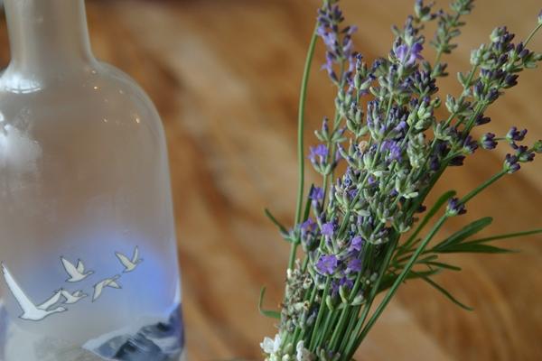 Lavender+3.JPG
