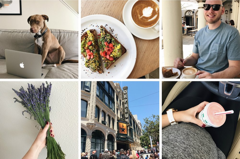 Life Lately According to Instagram | Freckled Italian
