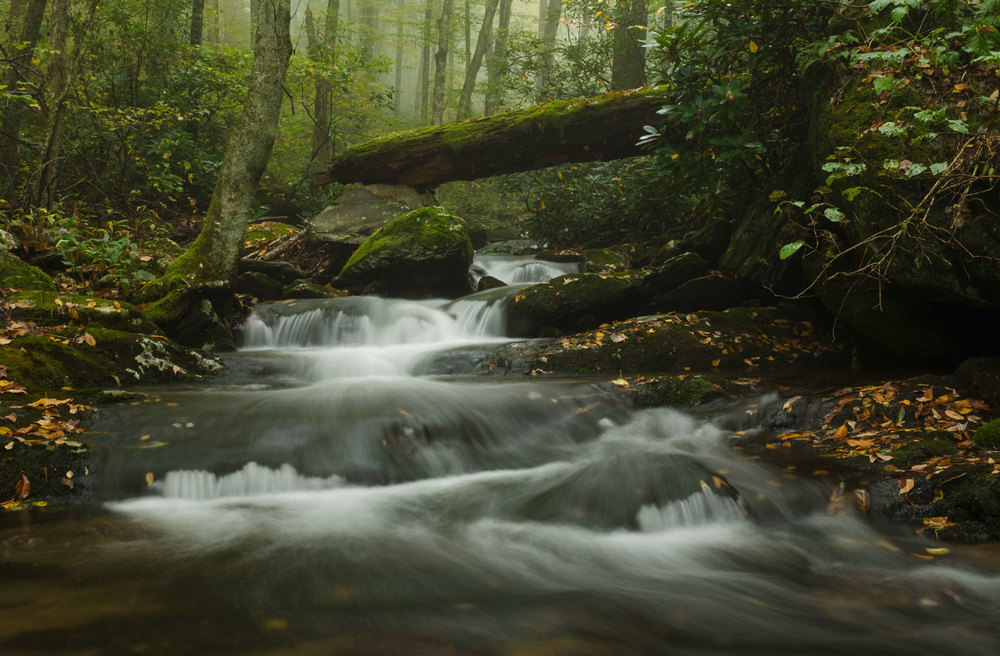 Pisgah National Forest North Carolina