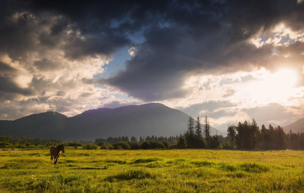 Along the backroads of Montana