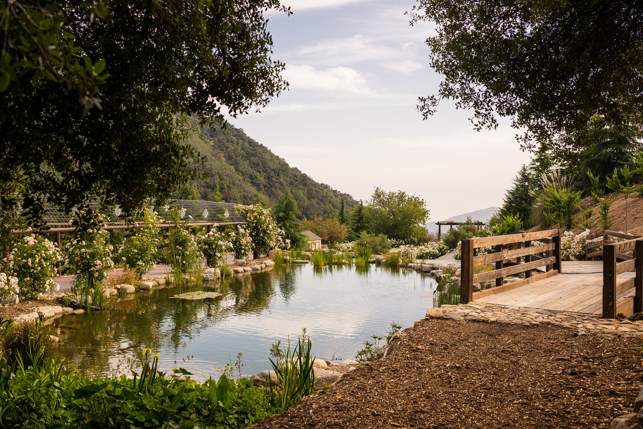 New Venue — Serendipity Garden Weddings