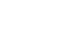The Social Therapy Group