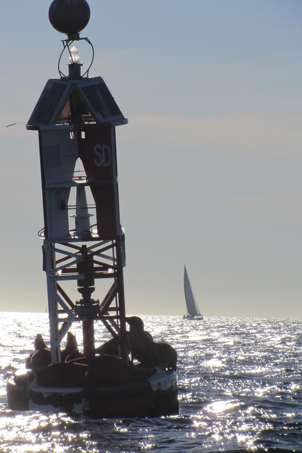 buoysd1.JPG
