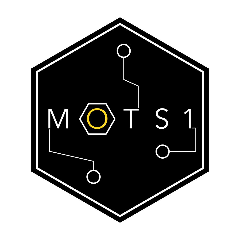 MOTS.jpg