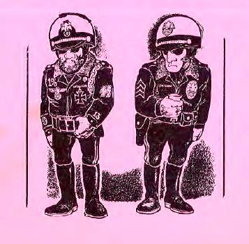 policingculture.jpg