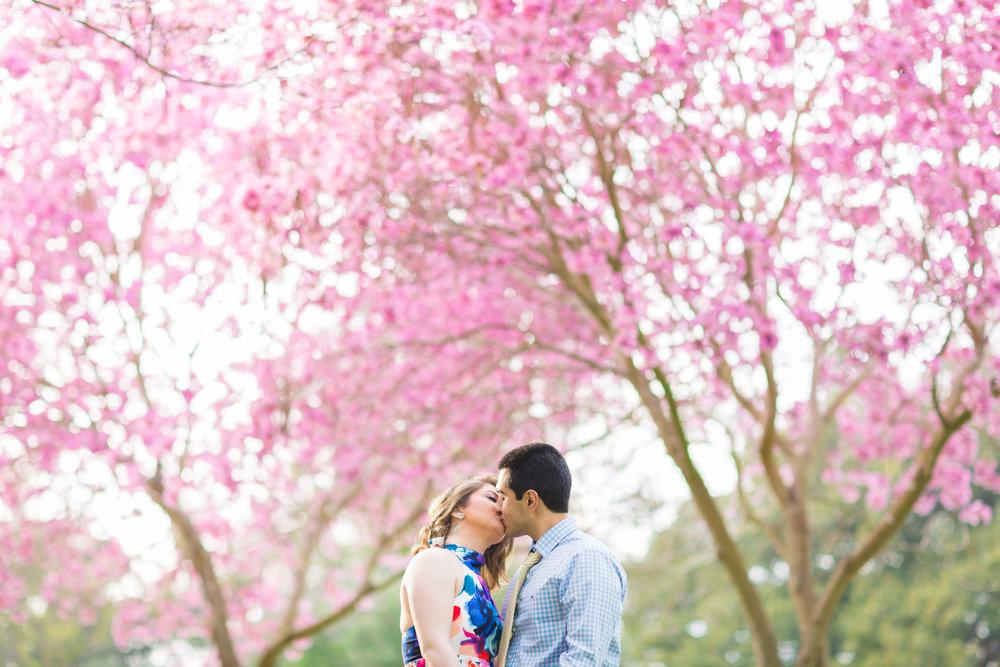 Khayambashi_Engagement-6333.jpg
