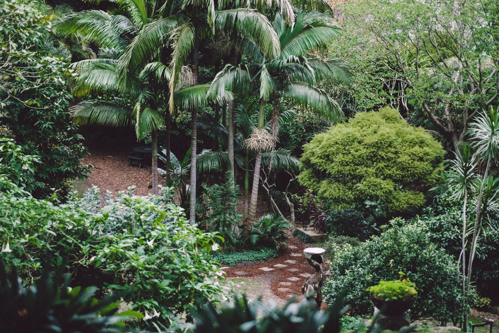 Secret garden-006-2.jpg
