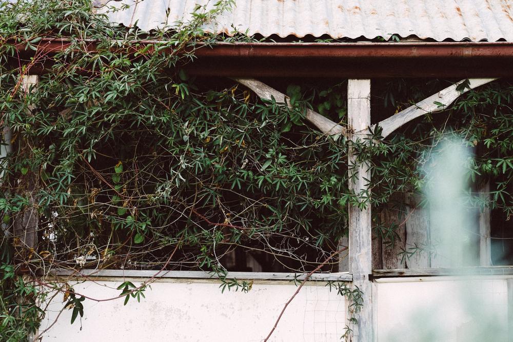 janelle-grace.com - derelict buildings--3.jpg