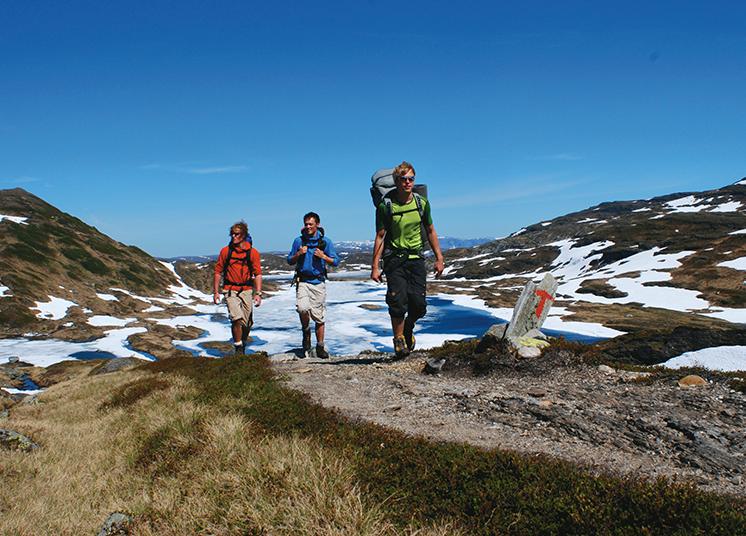 MountainSPORT -