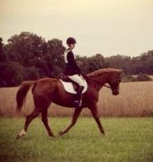 Kaleigh Apostolico & her horse, Big John
