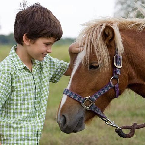 boy-pony.jpg