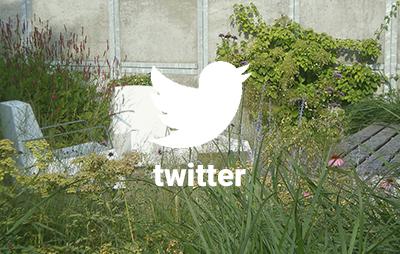 grasveld op twitter