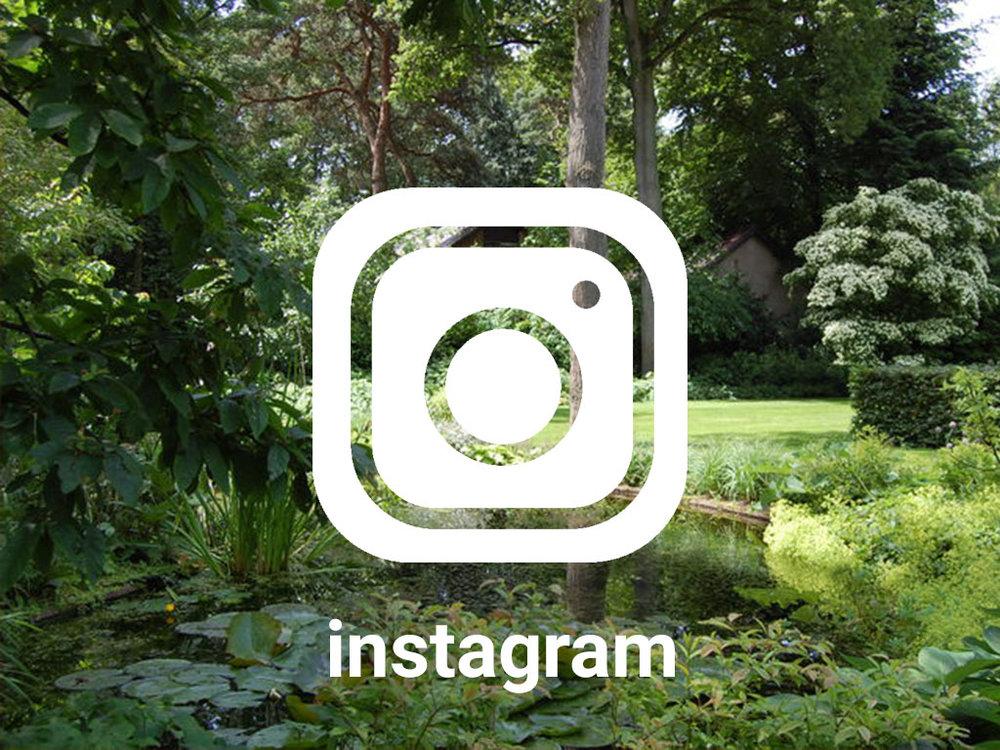 GRASVELD Tuin- en Landschapsarchitecten op instagram