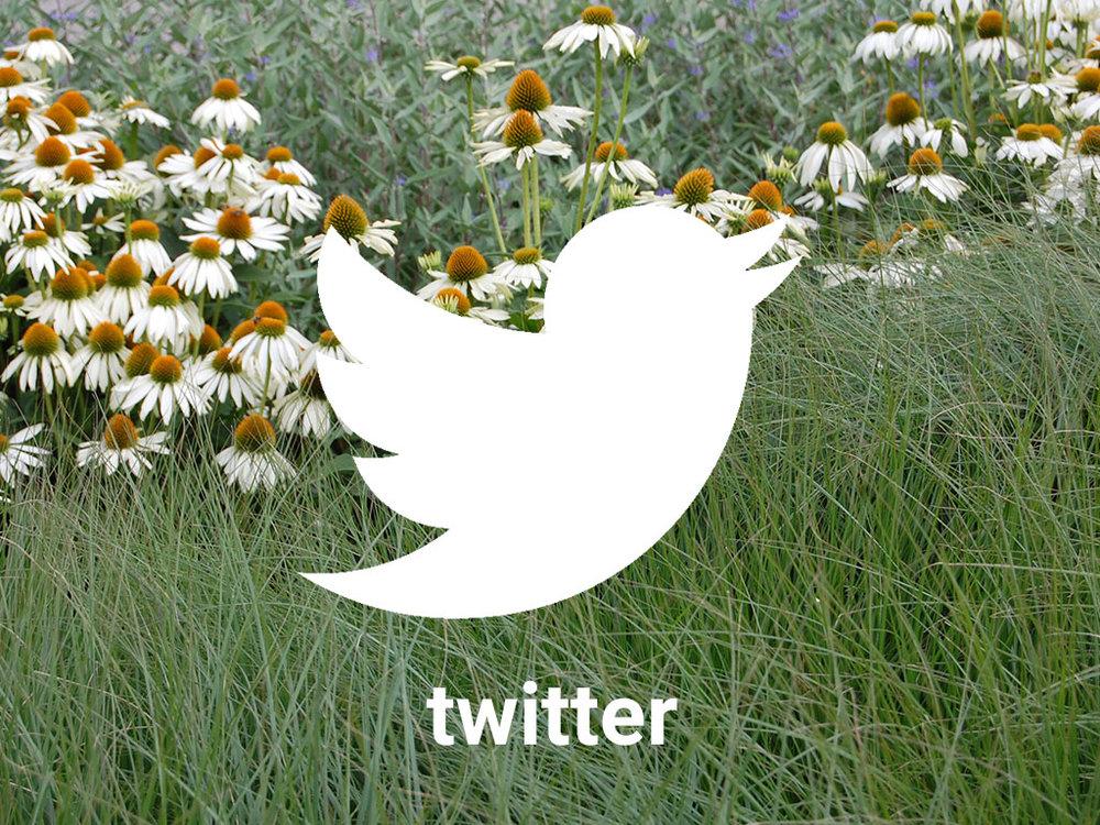 GRASVELD Tuin- en Landschapsarchitecten op twitter