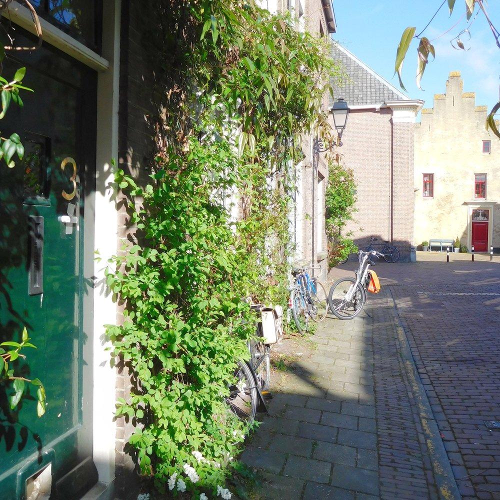 Meer groen in de straat - Groen in de straat zorgt voor een aangenaam en levendig beeld. Nu al zijn er in de Achterstraat, Herenstraat, Goilberdingerstraat, etc. een aantal geveltuintjes. Die laten zien dat groen, al is het maar een beetje, voor meer sfeer en kleur in de straat zorgt. Bij de herinrichting van de straat houden we daarom rekening met de bestaande geveltuintjes en maken wer ruimte voor meer tuintjes!Daarnaast willen we u de mogelijkheid bieden om groen voor uw gevel te plaatsen.Heeft u belangstelling voor een geveltuin, een paar planten in potten en een mooie klimplant? Dan doen wij u graag een aantal voorstellen, afgestemd op de ligging van uw gevel, waaruit u een keuze kunt maken. Uiteraard mag u ook zelf planten aanschaffen en plaatsen in de strook die wij voor u uitsparen.Dit is de bijdrage van de Gemeente Culemborg:Planten; keuze uit de verschillende voorstellen met/of zonder klimplant.Dit is uw bijdrage:Het onderhoud en water geven van de planten en afhankelijk van uw keuze potten van minimaal 30 cm doorsnede om de planten in te zetten en ondersteuning langs de gevel voor de klimplant in de vorm van leidraden.Doe mee en geef hieronder uw keuze door!