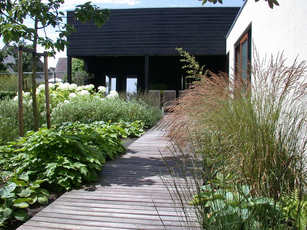 beplantingsplan voorbeeld GRASVELD Tuin- en Landschapsarchitecten