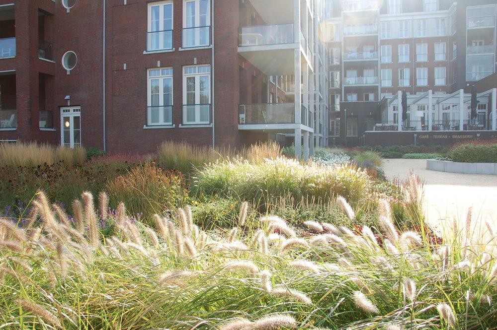 zonning gras door GRASVELD Tuin- en Landschapsarchitecten te Leyhoeve
