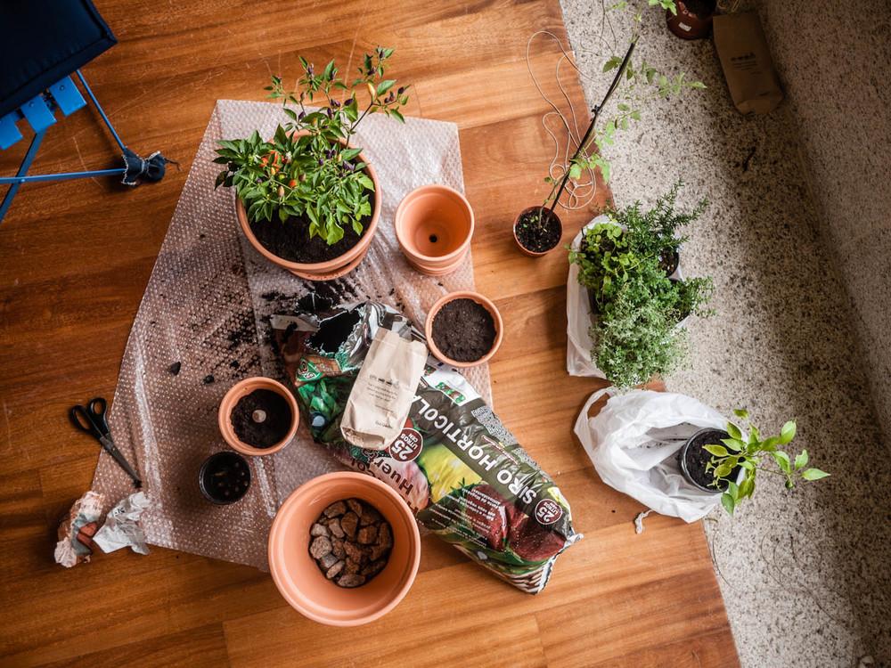 happy planters